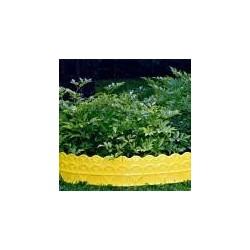 Бордюр для цветников (14х310см)