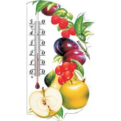 Термометр-сувенир Фрукты ТУ У 33.2-14307481.027-2002