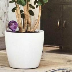 Ороситель пластиковый d9, h30см 0,3л прозр. фиолетовый (eggplant) (2шт в уп.)